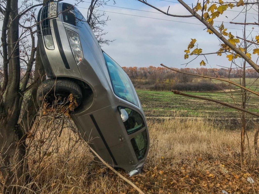 Вилетіло в кювет та повисло на дереві: під Дніпром сталася жахлива ДТП
