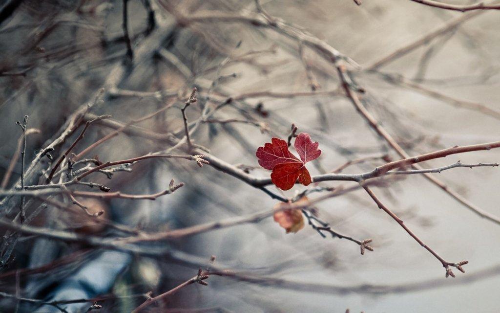 Погода у грудні: синоптики розповіли, де буде дуже погана погода