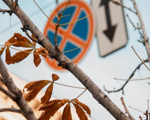Будет очень холодно: синоптики дали прогноз на 24 ноября