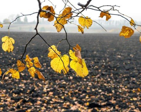 До минус 10 градусов: синоптики дали нерадостный прогноз на субботу