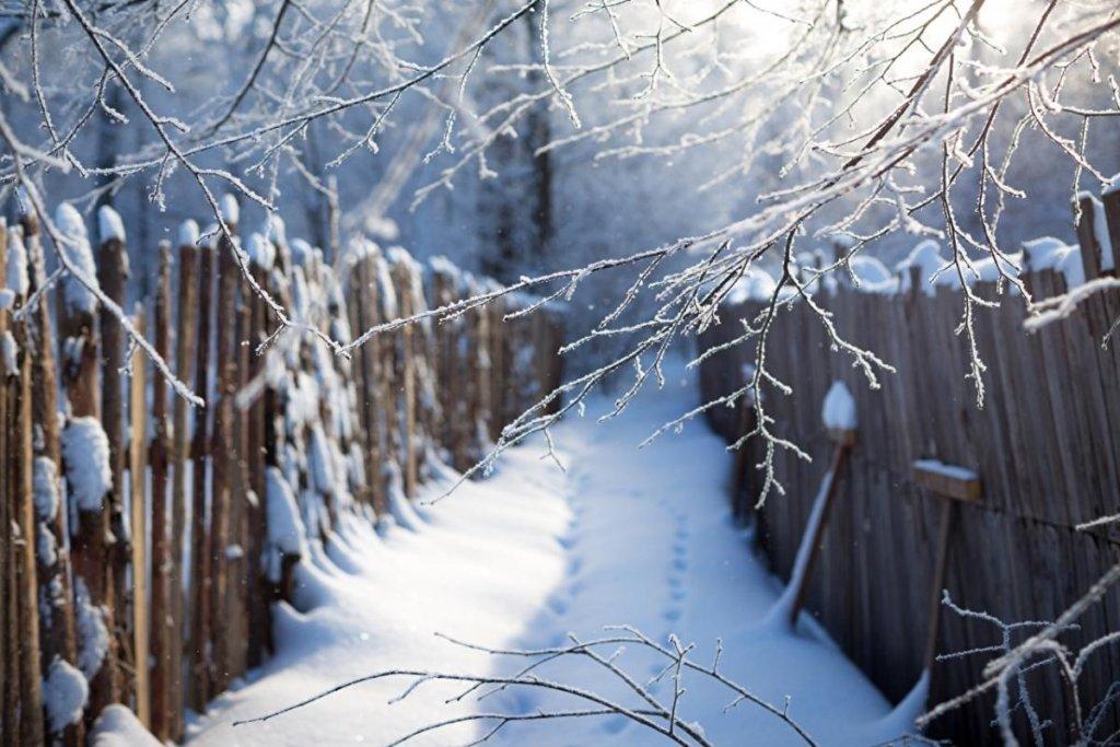 До 25 морозу і сніг: завтра погода завдасть останнього удару