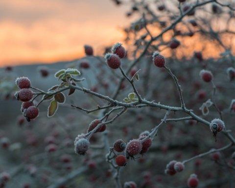 Морозы до 11 градусов и гололед: какая погода ждет украинцев 4 декабря