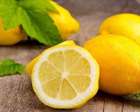 В Украине могут исчезнуть лимоны: названа причина