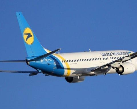 Украинская авиакомпания сделала «подарок» пассажирам с животными: что изменится