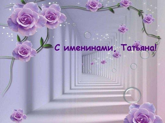 День Татьяны: яркие открытки и лучшие поздравления