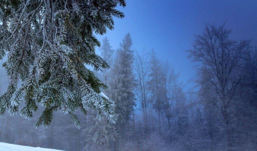 Начнутся аномальные морозы: синоптики дали плохой прогноз на весну