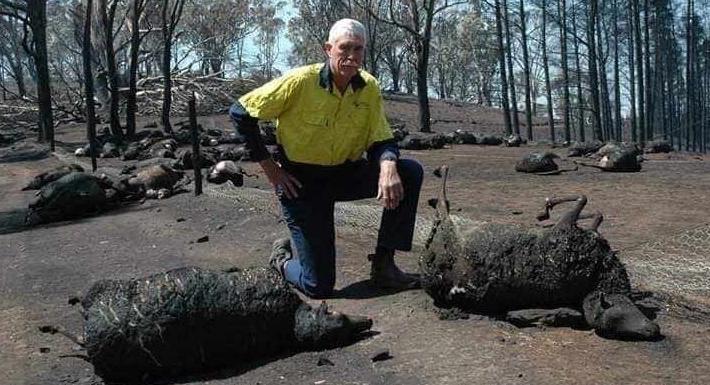 Пожары в Австралии: континент накрыл настоящий Апокалипсис