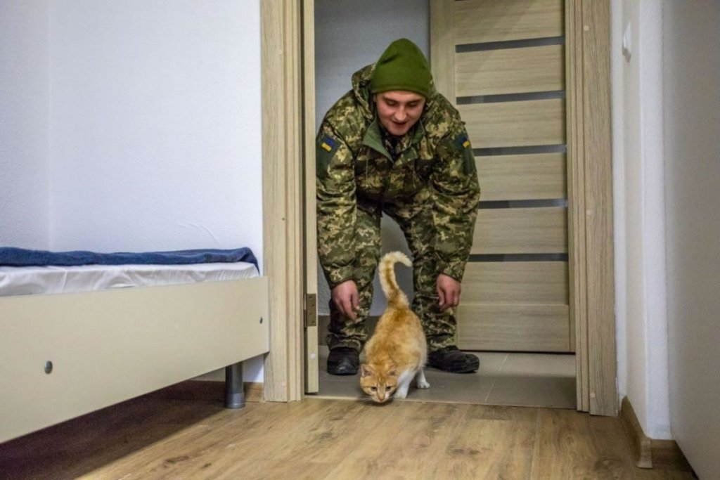 В Украине приняли важное решение по жилью для военных: что нужно знать