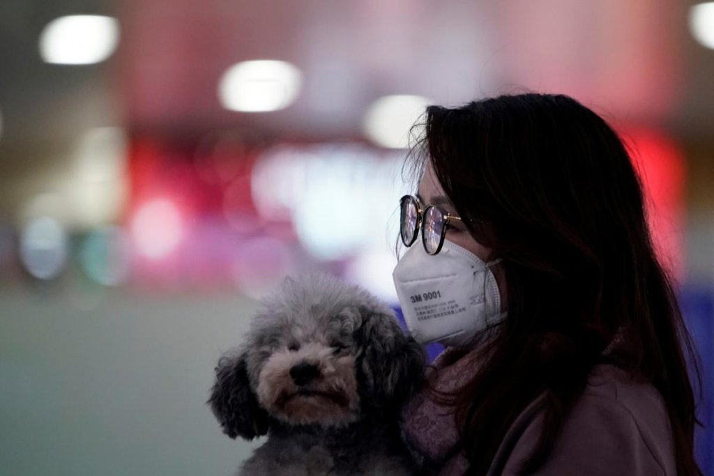 В Китае предупредили о новой вспышке коронавируса COVID-19