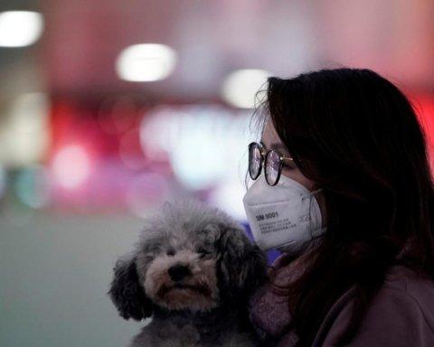 Не закончится летом: в ВОЗ предупредили о новых вспышках коронавируса
