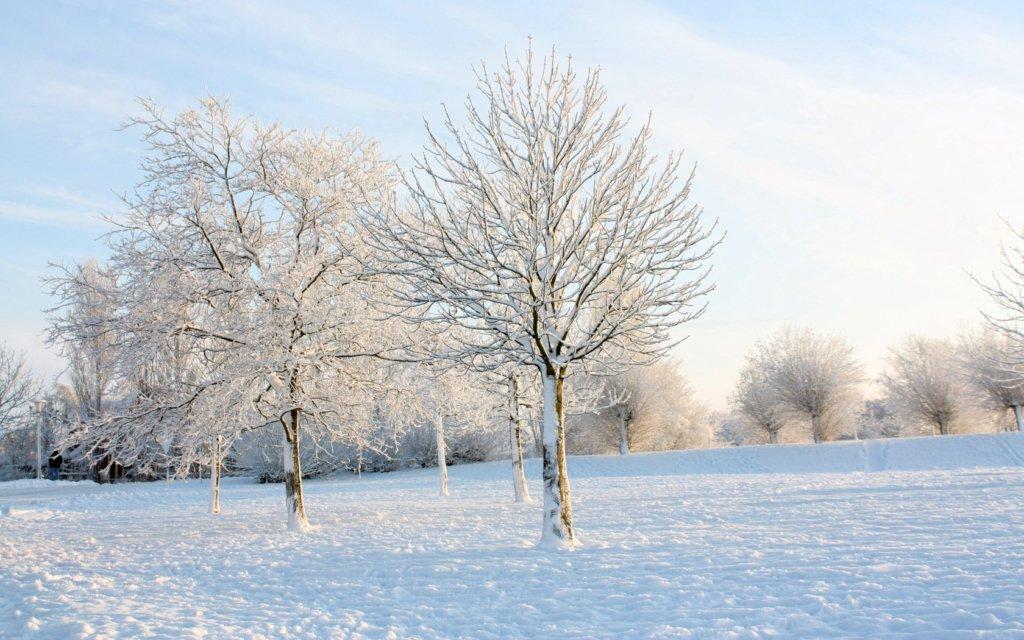 Мороз и сильный ветер: синоптик прогнозирует визит настоящей зимы в Украину