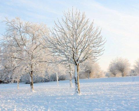 Мороз і сильний вітер: синоптик прогнозує візит справжньої зими в Україні