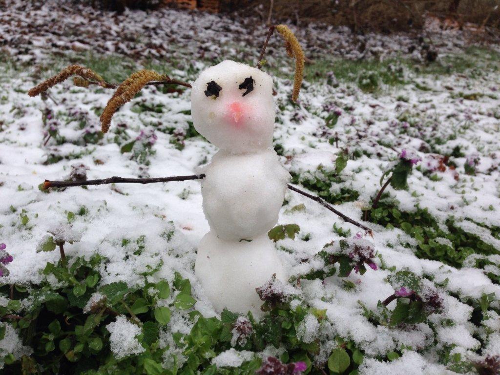 Такого ще не було: зима в Україні побила аномальний рекорд