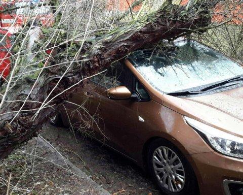 Смертельный ураган в Европе: стало известно о количестве жертв