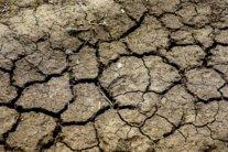 Аномальна спека без опадів: кліматолог попередила про жахливу погоду влітку