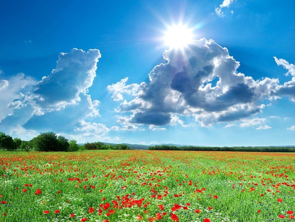 День літнього сонцестояння: що треба обов'язково зробити в цей день і що заборонено