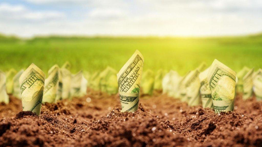 Відкриття ринку землі: названа вартість одного гектара