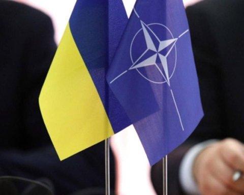 Україна готова до участі в програмі НАТО: міністр Загороднюк розповів деталі