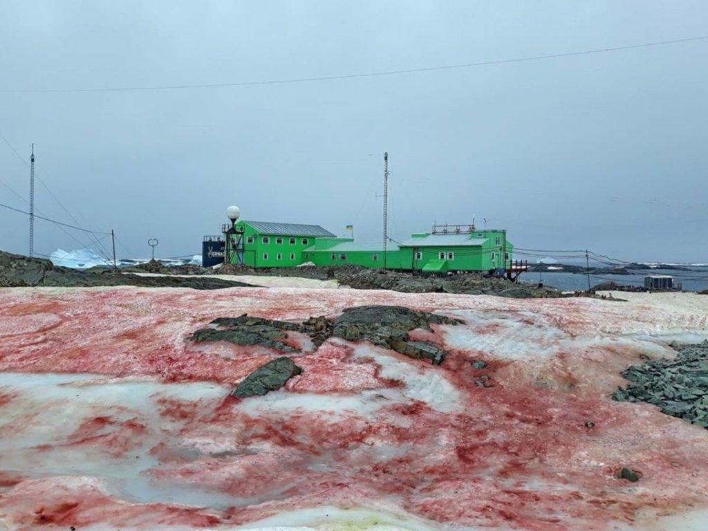 Українська антарктична станція забарвилася у кривавий колір: вражаючі фото