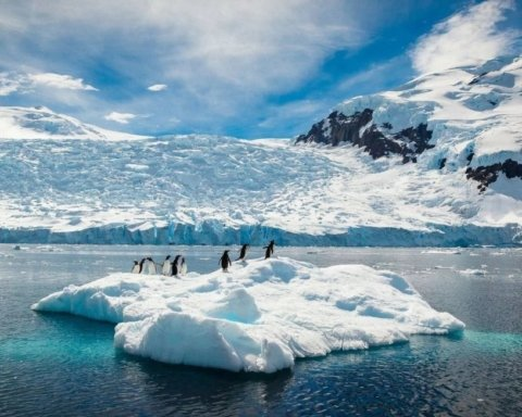 Антарктида тает: NASA опубликовало фото катастрофического таяния ледяной шапки