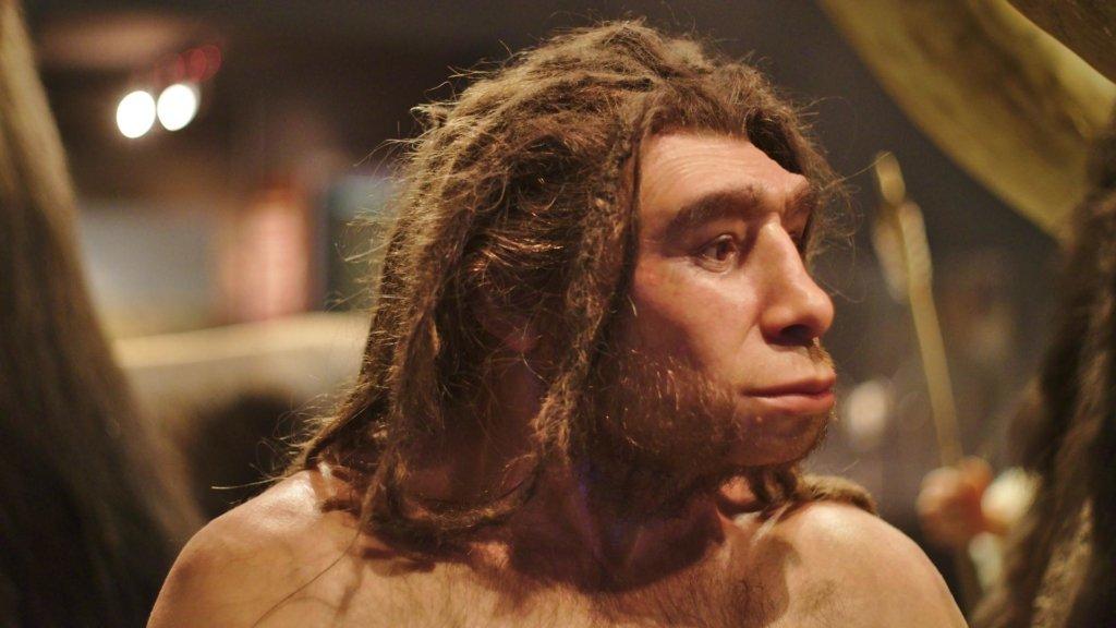 В геноме африканцев наследили неандертальцы: что теперь будет с теорией о Homo sapiens