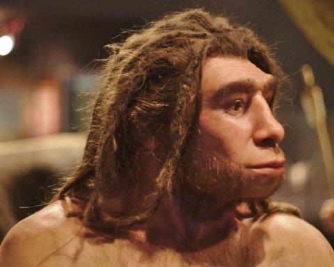 У геномі африканців наслідили неандертальці: що тепер буде з теорією про Homo sapiens
