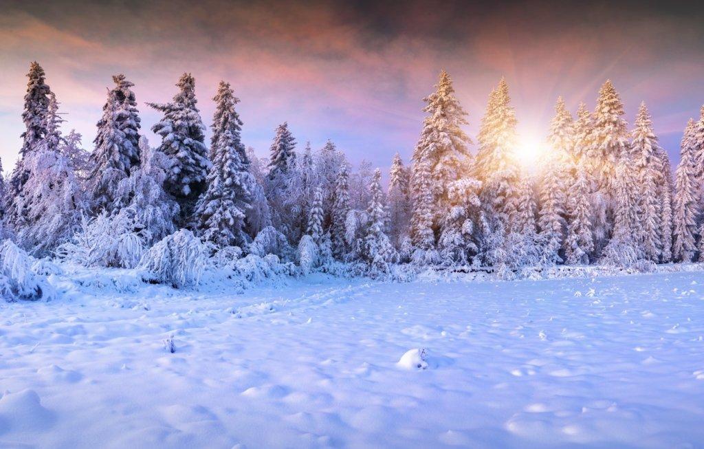 Выходные и праздники в январе 2021: когда будут отдыхать украинцы