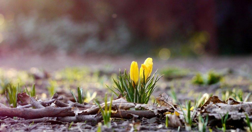 Похолодает до морозов: погода в Украине резко изменится