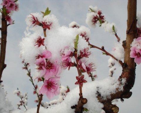 Сильный ветер и дождь со снегом: синоптики предупредили об ухудшении погоды перед Пасхой