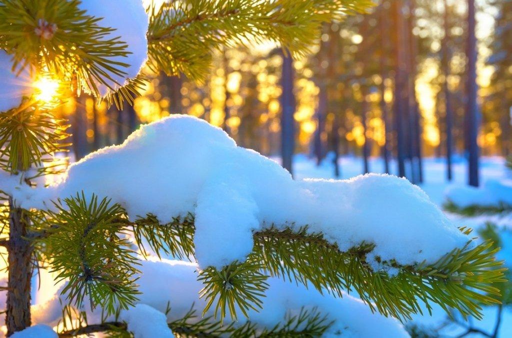 Морози до 24 градусів: синоптики розповіли, де на вихідних буде погана погода