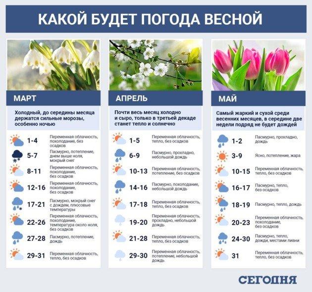 Очень плохой прогноз по урожаю: какая погода будет весной