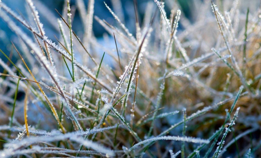 На Украину надвигается зимний холод с мокрым снегом и дождем: прогноз