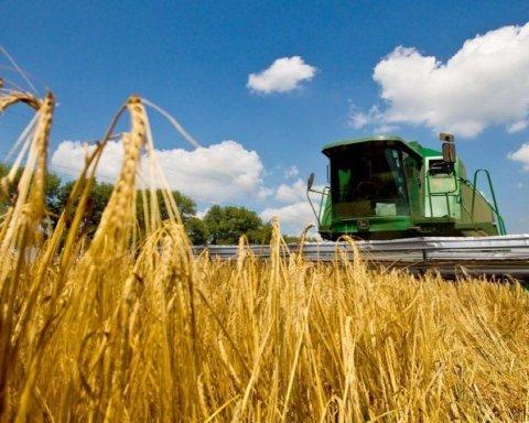В Украине начинается продажа земли: сколько стоит гектар