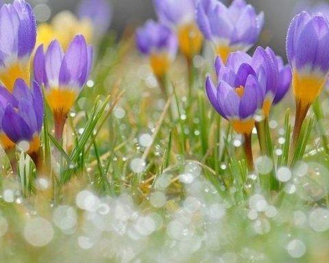Прогноз погоди на 9 березня: в окремих регіонах температура підвищиться до 20 градусів