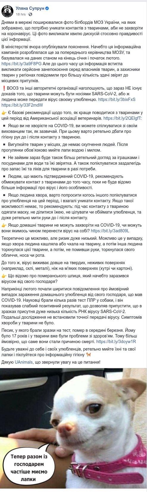 Можно ли заразиться COVID-19 от животных: Супрун четко объяснила