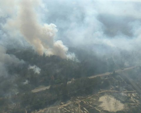 В Украине продолжают пылать лесные пожары: свежие фото и видео