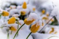 25 градусов и снег: синоптики рассказали об аномальной погоде завтра