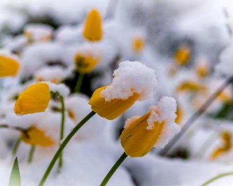 Под Киевом выпал снег: синоптик интересно пояснил погодную аномалию