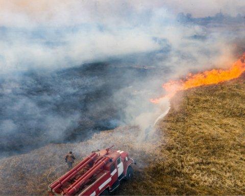 Під Києвом спалахнула нова лісова пожежа