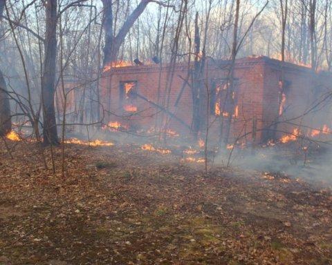 Билецкий предлагает создать добровольческие отряды для тушения пожаров