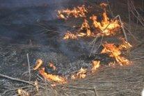 Гасіння пожежі в Чорнобильській зоні завершено: Аваков