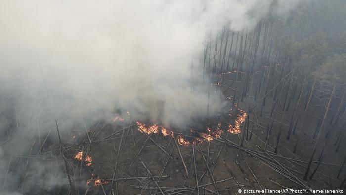 Пожары в Украине продолжаются: что происходит в Чернобыле и Житомирской области