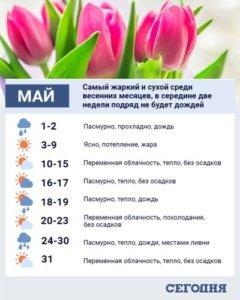 Аномальная погода и сильные ливни: полный прогноз погоды на май