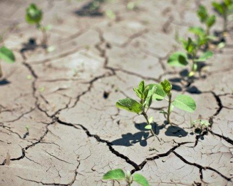 Начнется аномальная засуха: синоптики резко изменили прогноз на май