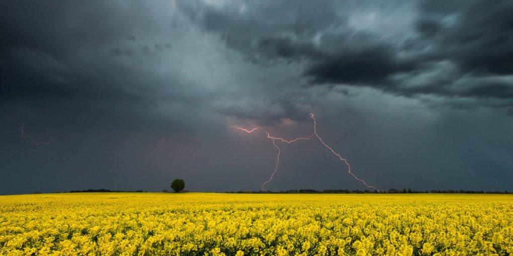Якою буде погода в березні: Укргідрометцентр опублікував прогноз на місяць