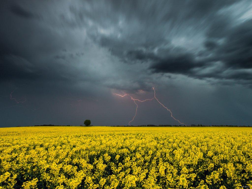 Дощі з грозами та холод: прогноз погоди в Україні на 30 квітня
