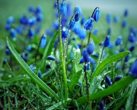 Будет болеть голова: синоптик озвучила погоду на 15 мая