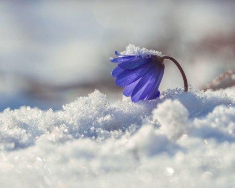 Европу засыпало снегом, следующая — Украина: впечатляющие фото