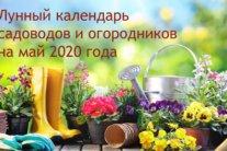 Лунный посевной календарь на май: когда и что нужно сажать и сеять