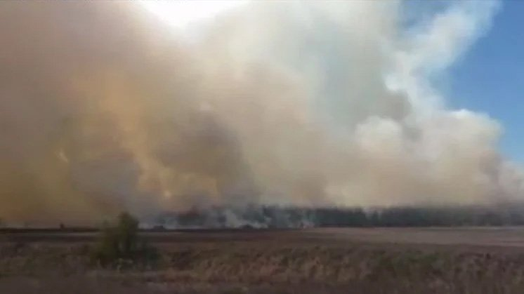 Навіть Сонця не видно: під Києвом спалахнула моторошна пожежа